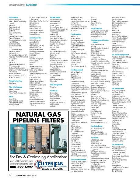 American Gas - October 2010