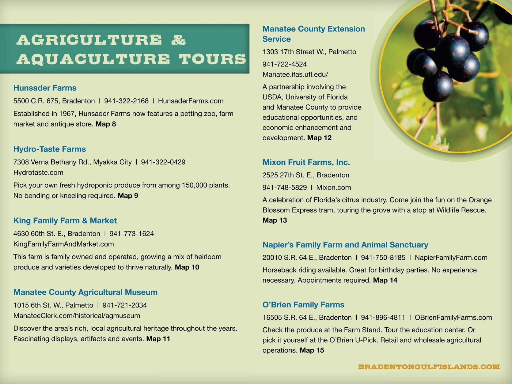 Bradenton Area, Florida – Farms, Fish, Food and Fun