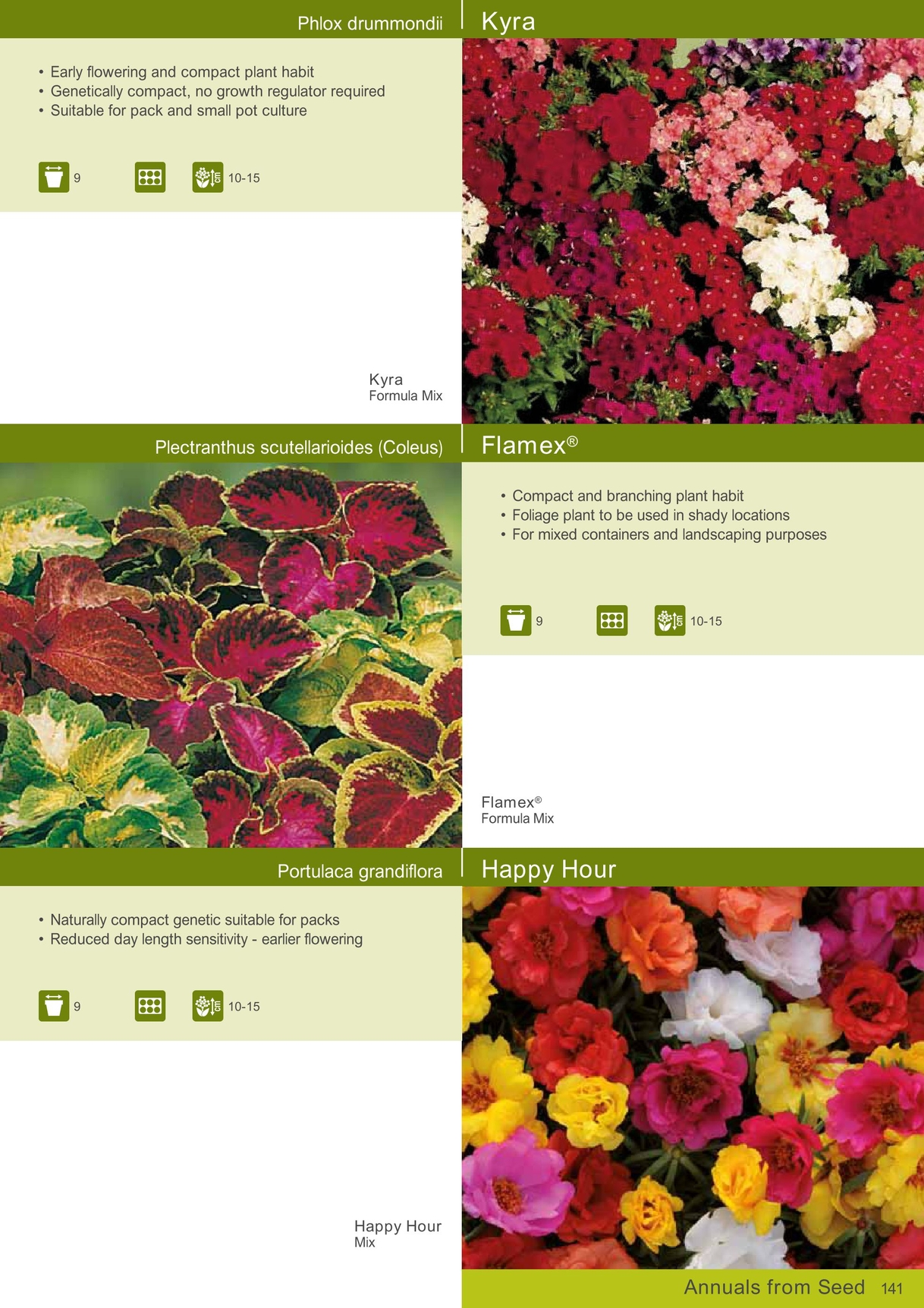 Annuals And Perennials 2014 Uk